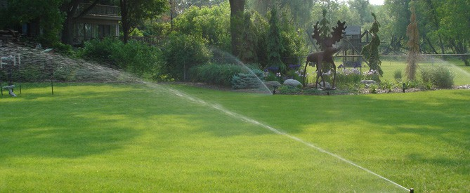 lawn care for backyard