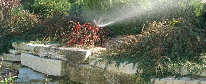 flowerbed with sprinkler