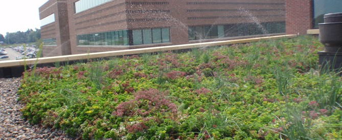sprinklers on rooftop garden