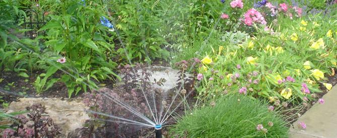 a sprinkler system irrigating a flower bed